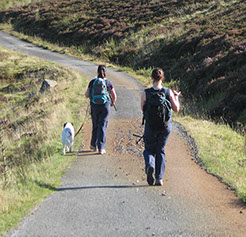 Walk the West Highland Way, at Bridge of Orchy